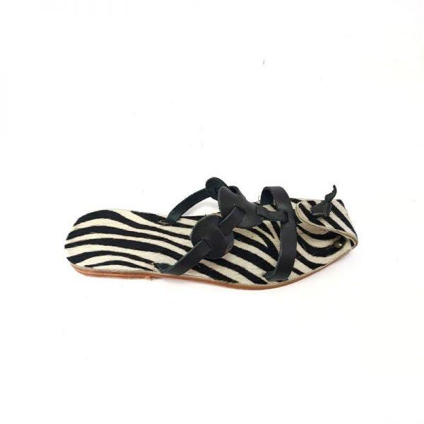Scalzato Zebra